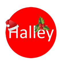 Halley Primary School Christmas Logo